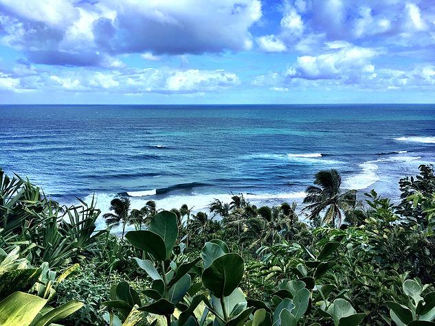 Kauai 15.jpg