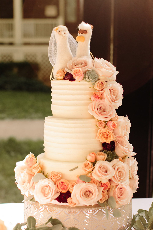 chicago-block-party-wedding-61.jpg