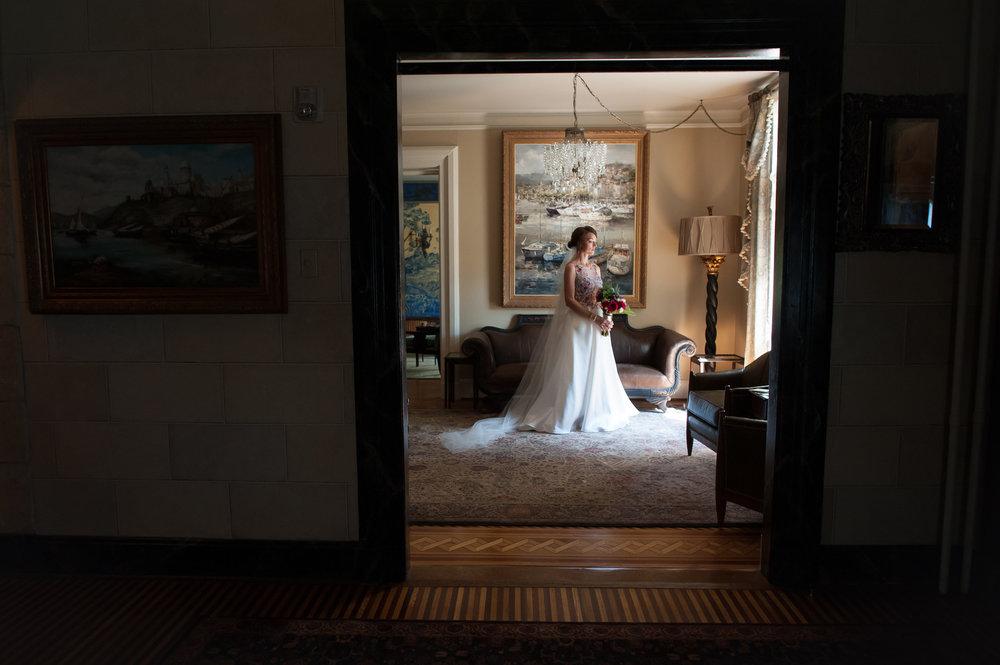 Bridal Portrait Chicago Wedding Elite Photography