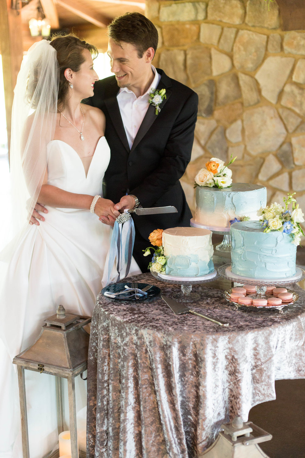 Baby Blue Marble One tier Cake Chicago Wedding Hors d'oeuvres Chicago Wedding Reception Meghan McCarthy Photography