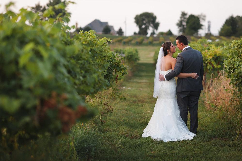Bride and Groom Portrait Chicago Winery Wedding Elite Photo