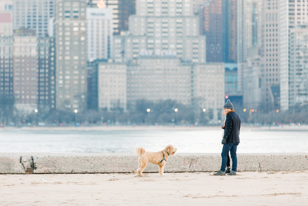 Chicago North Avenue Beach Proposal Nicole Morisco Photography