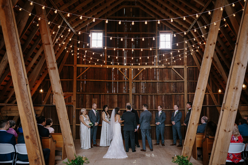 Chicago Barn Wedding lisa kathan photography