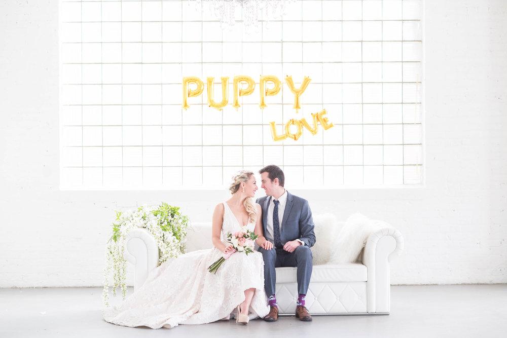 Puppy-Love-225.jpg