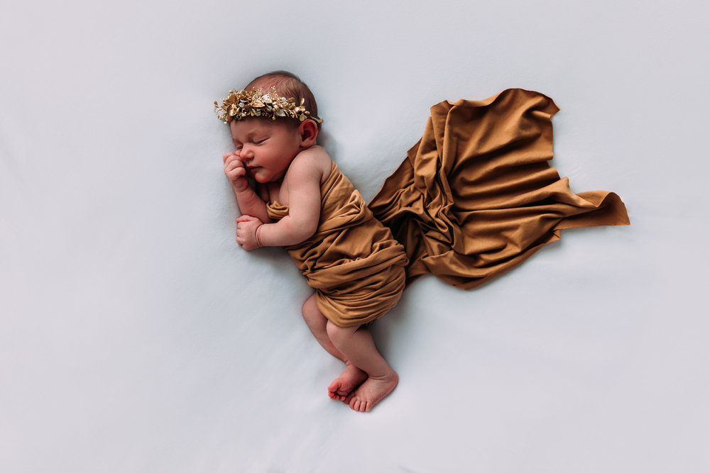 newborn-photography-austin-minnesota-studio-albert-lea-minnesota-gold-white-modern