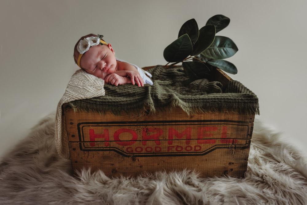 newborn-photography-austin-minnesota-studio-albert-lea-minnesota-Hormel-modern