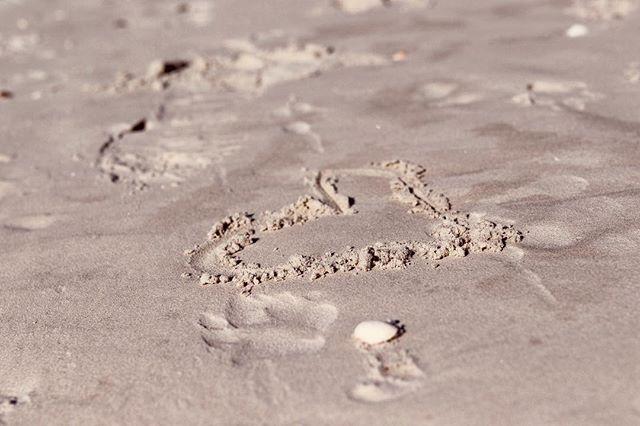 💕🌴 I needed this. Heck, who doesn't. . . . . . #beachphotography #beach #photography #photooftheday #beachlife #sunset #nature #ocean #travel #summer #photographer #photoshoot #model #naturephotography #picoftheday #sea #portraitphotography #waves #travelphotography #beauty #love #sun #beachphotoshoot #beachbody #landscape #travelgram #bikini #wanderlust #sand