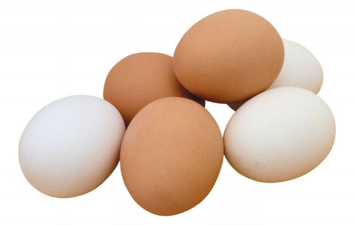 chicken_eggs.jpg