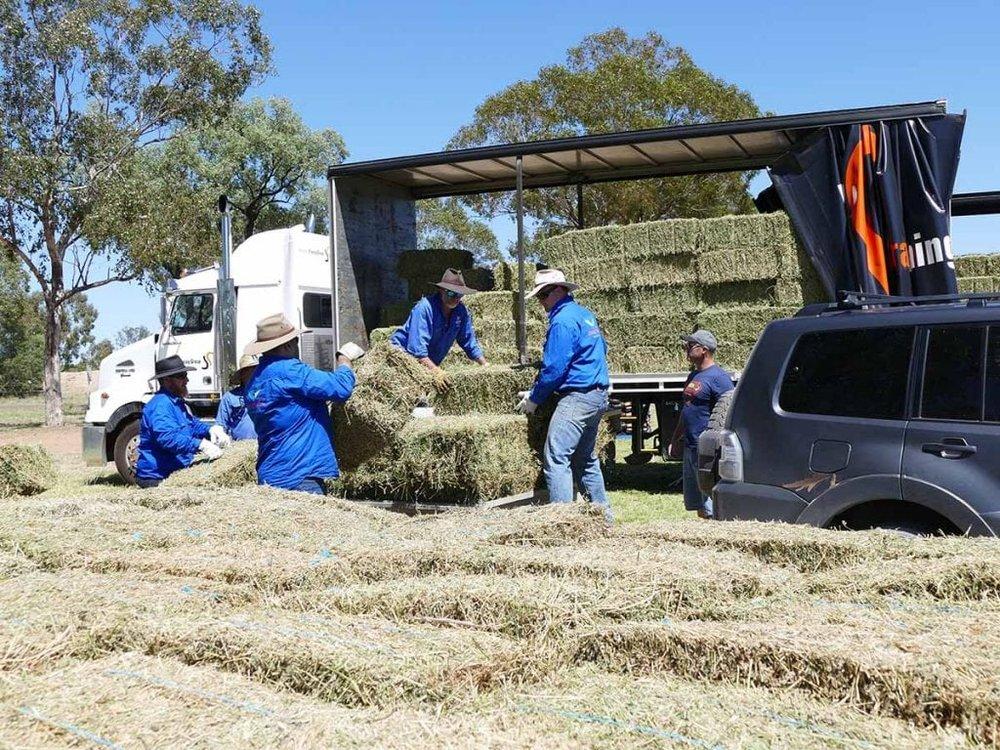 hay-bales-1024x768.jpg