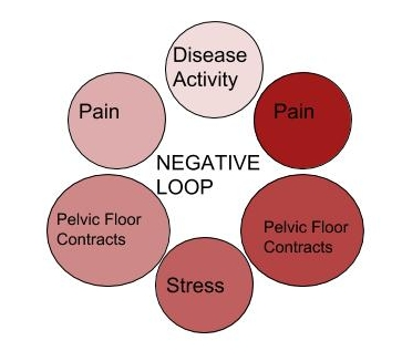 This is a very simplified graphic that I made to demonstrate the pain loop. *demonstrating my ballin graphic skills :)