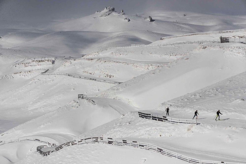 snowfarm2.jpg