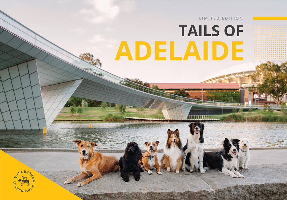 tails of adelaide