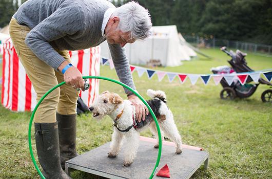 THE DOG SHOW - Photo: Jonathan Cherry