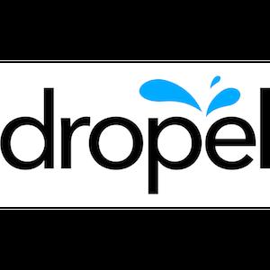 Logo_Dropel.png