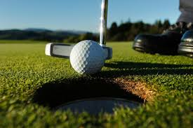 Golf - There are two first rate golf courses within a ten minute drive, one 9, Brecon Golf Club and one 18 hole, Cradoc Golf Club. The 18 hole course also has a driving range and resident Pro. We are also situated within easy reach of many other courses not least Celtic Manor, the venue for the 2010 Ryder Cup.