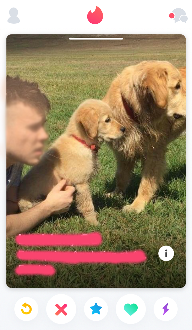 tinder guy with puppies.png