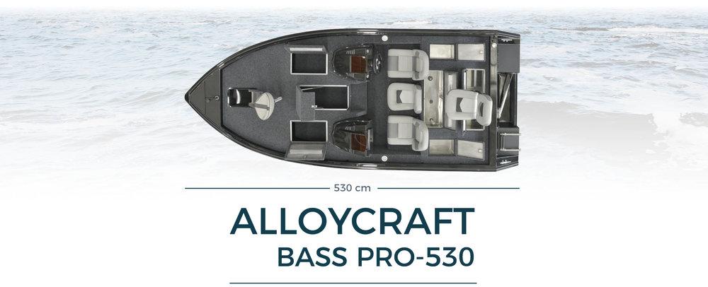 Bass pro 530 båtrubrik.jpg