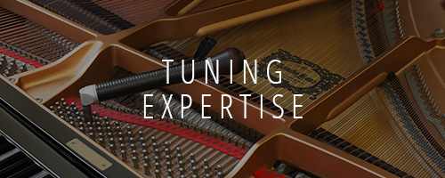 Tuning / Expertise