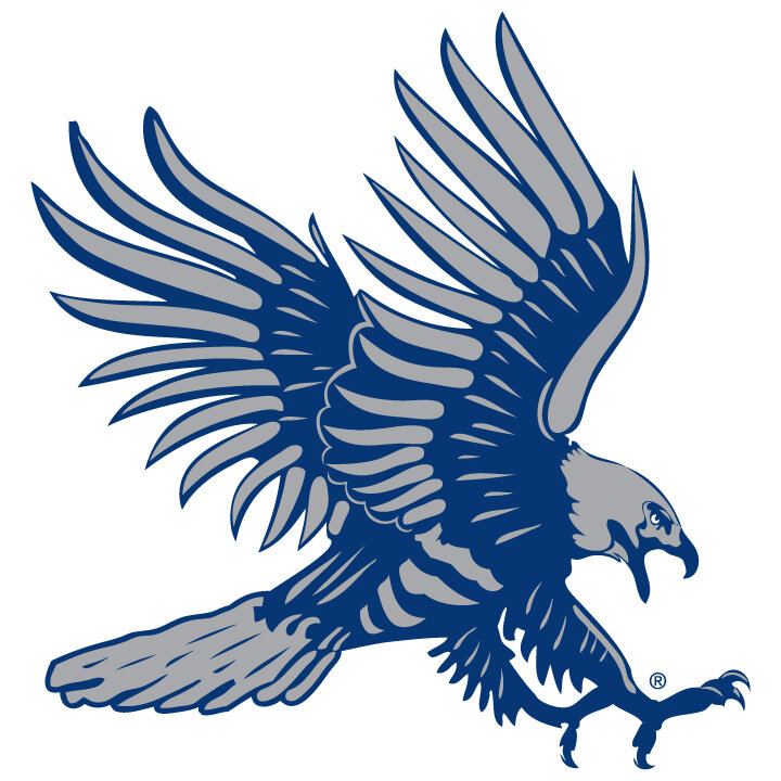 Blue Hawk Boosters