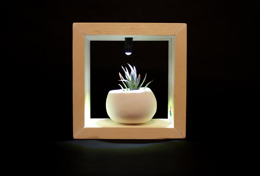 growlight-fr.jpg