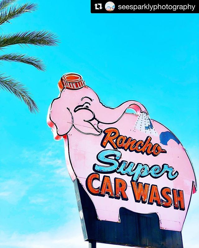 #Repost @seesparklyphotography ・・・ 💕🐘🚿 #pink #elephant #sign #palmtree #palmsprings #cute #photography #westcoast #wanderlust #california #beautiful #colorful #lifeofadventure #livecolorfully #findthebeauty #goodvibes #ig_color #instagood #acolorstory #moodygrams #artofvisuals #explore #adventure #travel #peoplescreatives #beautifuldestinations #travelphotography