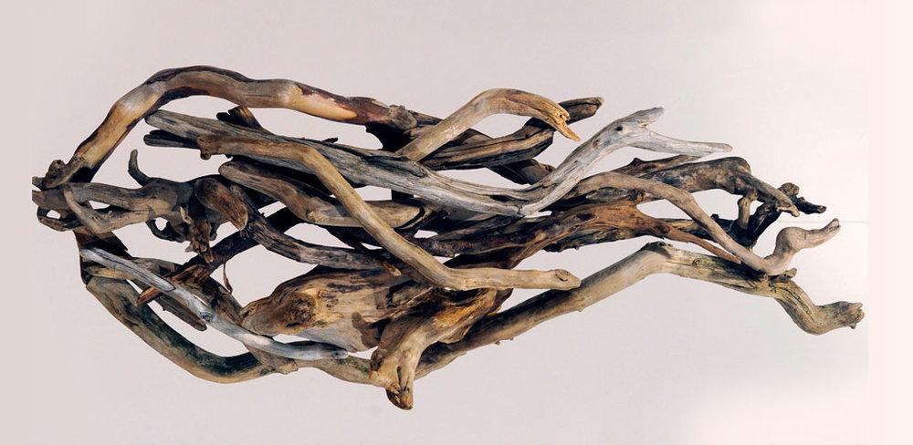 Fragrant Pine