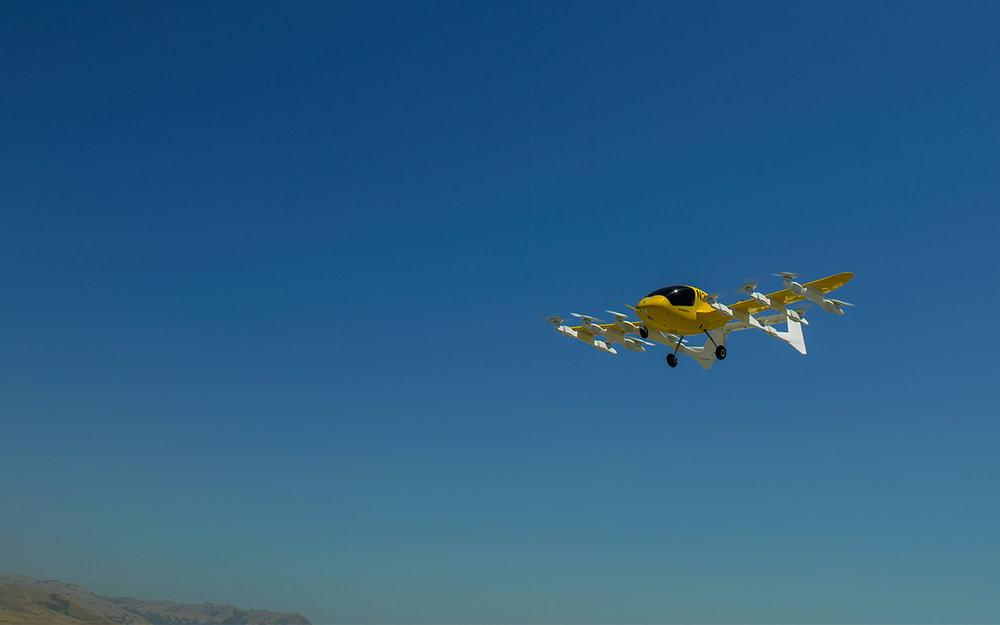 cora_flight_blog-1.jpg