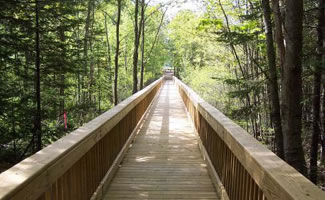Cox Pinnacle is a 103 Acre park in West Brunswick features a trail system though forested hills and wetlands.  The trail system includes access to Brunswick's highest point (the Pinnacle) 350 feet above sea level.