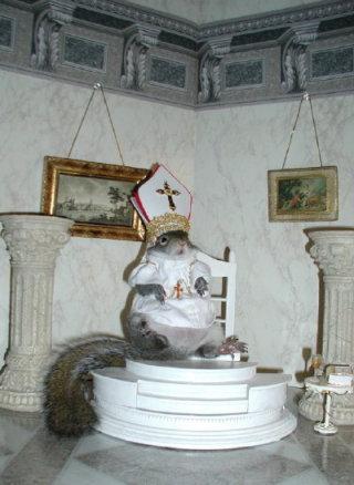 FunnySquirrelOutfits025.jpg