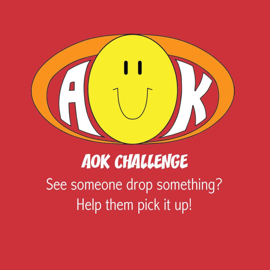 AOKChallenge_HelpPickUpDropped.jpg