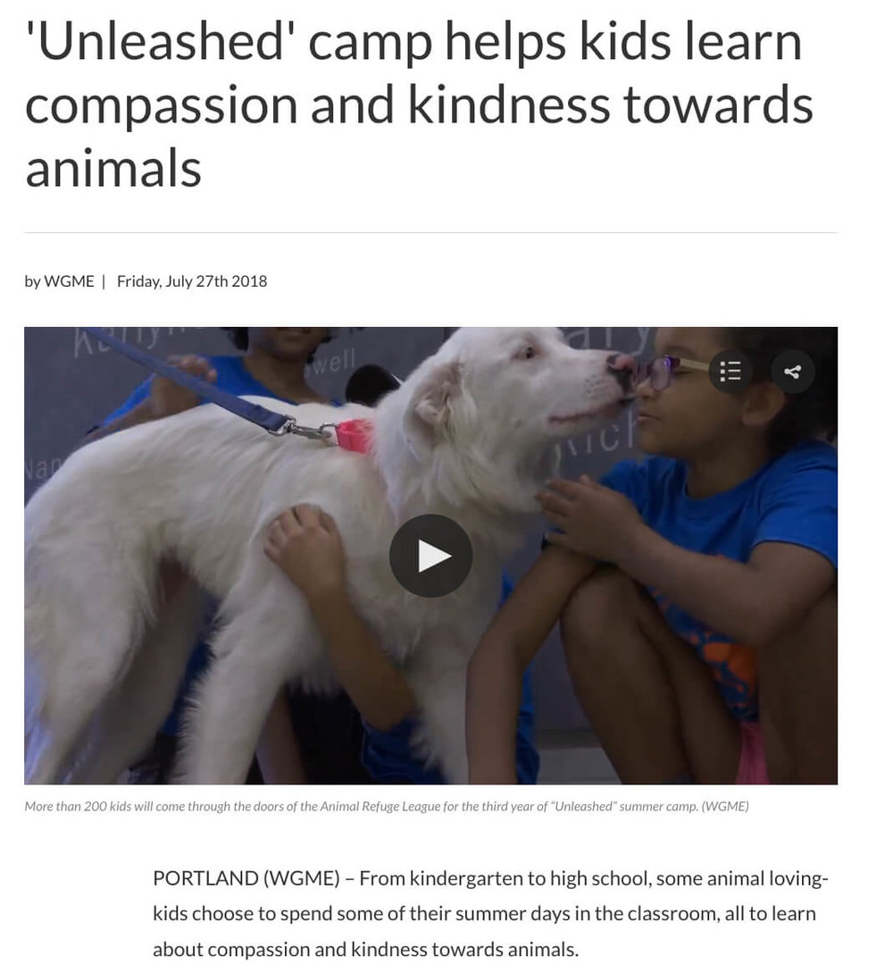 Unleashed Camp Teaches Kindness to Animals