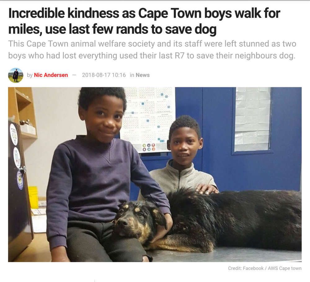 South African Boys Save Dog