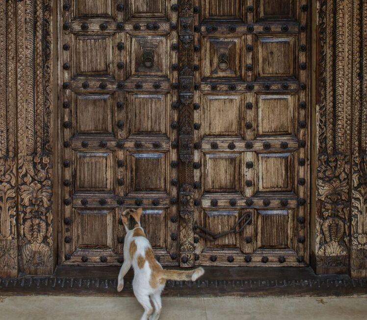 A Doorway toExperience - At SIWWAA we want to open doors to new experiences and let people in on the secret. We want our products and stories to give our customers the opportunity to see and feel the same things people have seen and felt for centuries but through a modern eye