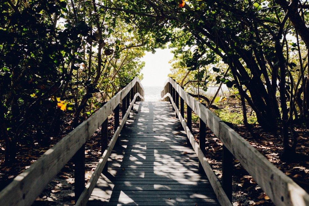beach-boardwalk-bridge-304862.jpg