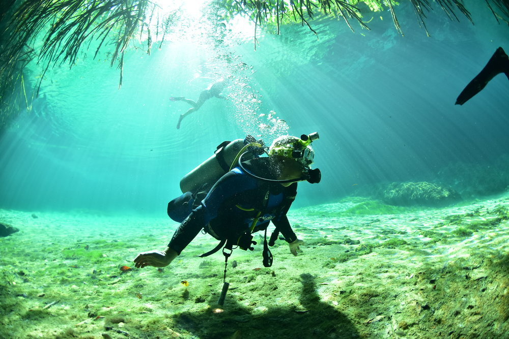 Diving Casa Cenote.