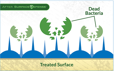 treated-surface-after-biosweep image.png