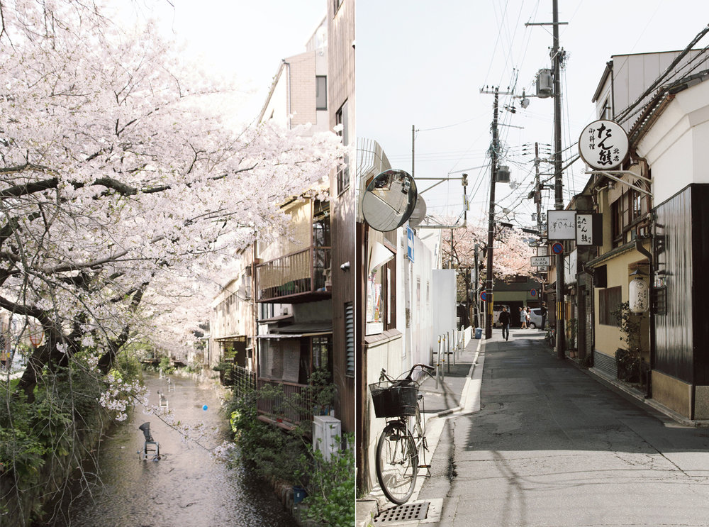 japan_11.jpg