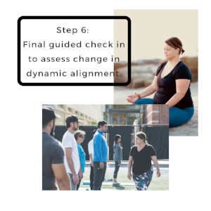 Mindful Movement Dynamic Alignment.PNG