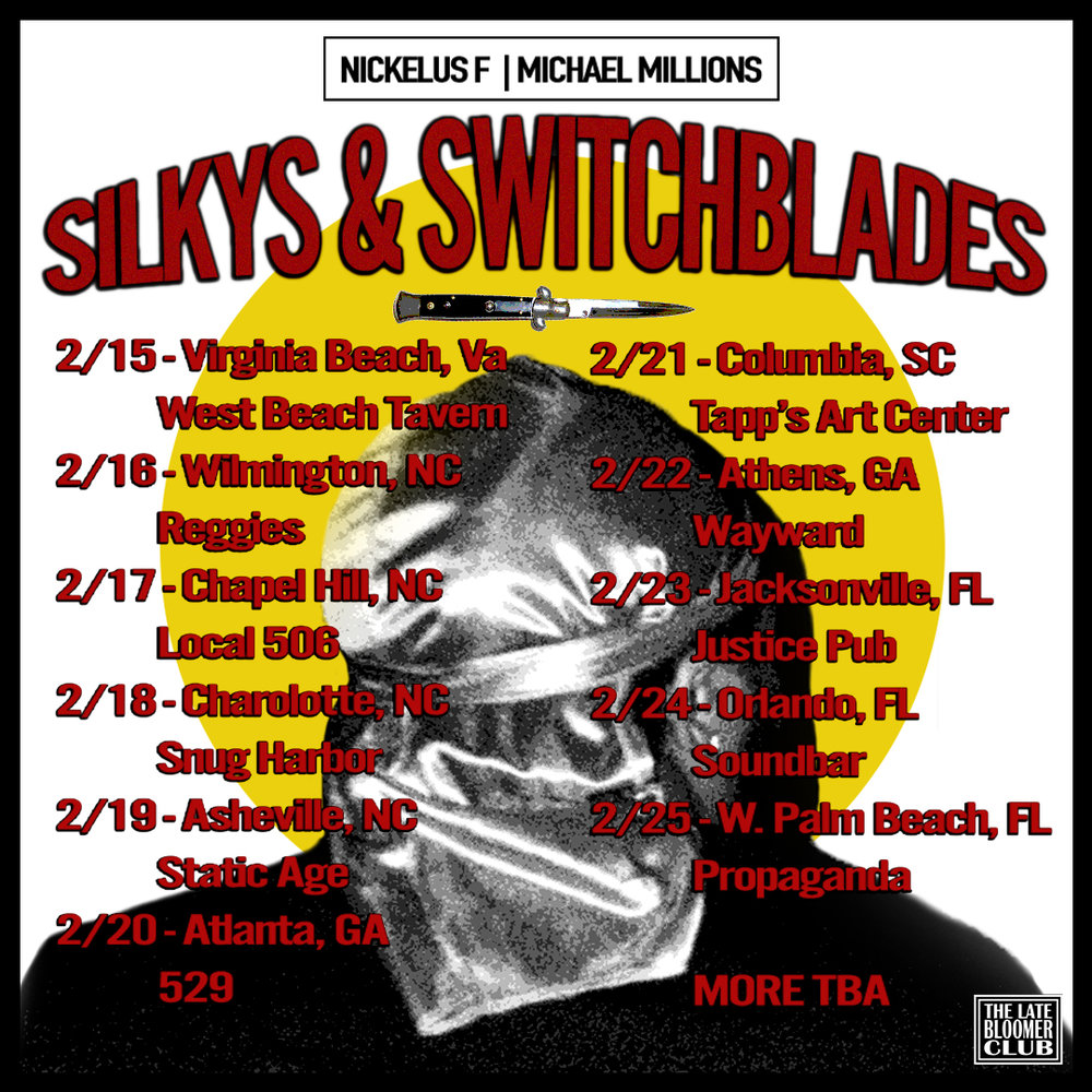 SWITCHBLADES AND SILKIES FLYER FIN.jpg