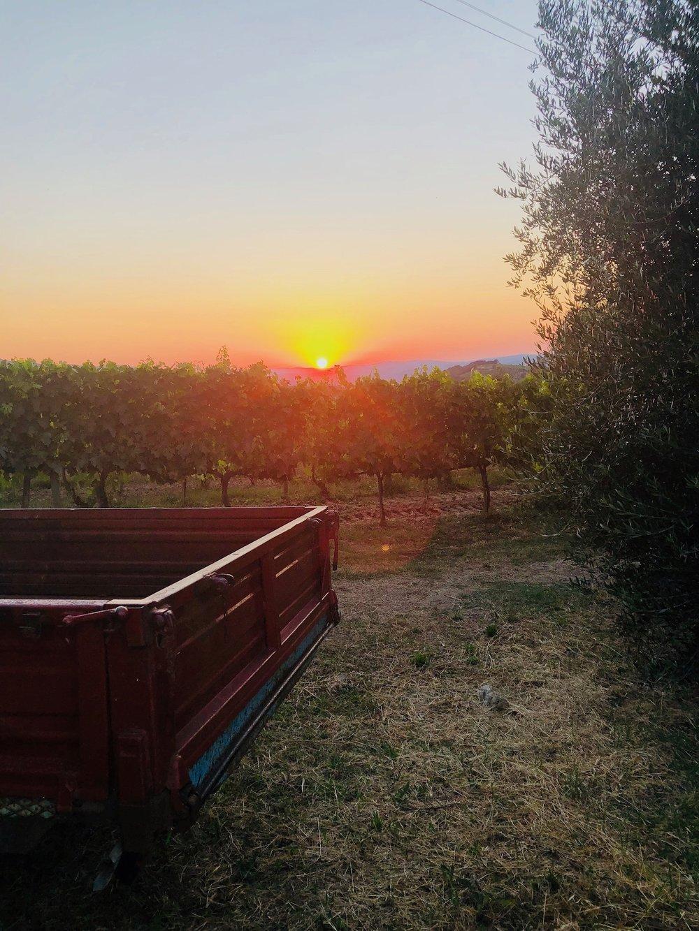 Goodbye, Tuscany. We ❤️ you.
