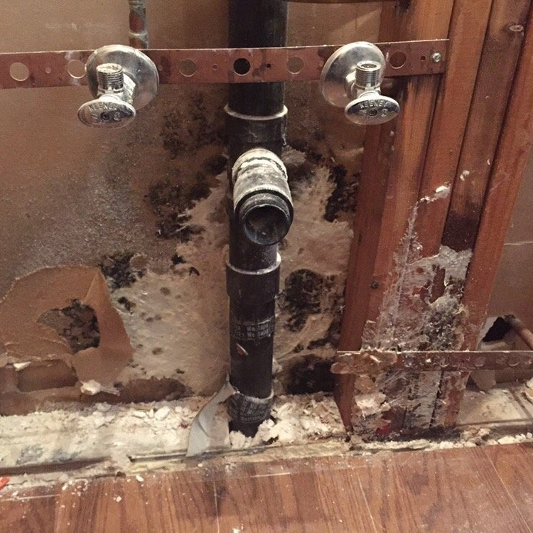 If you can smell mold but can't see it, it's there. An inspection into areas where there is moisture or where there was a previous leak may be required to find it.