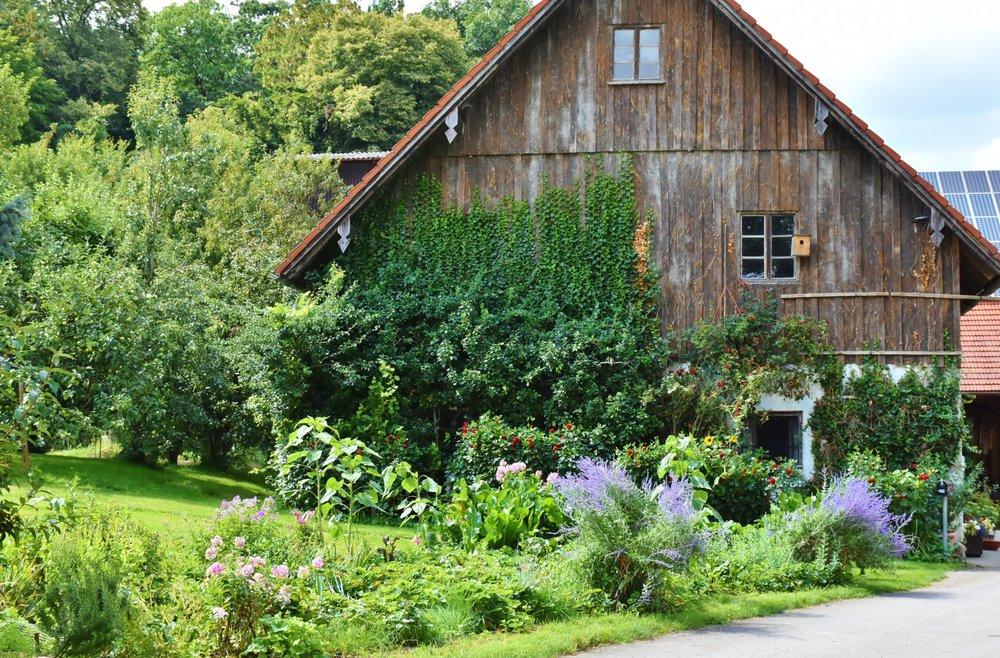 farm-farmhouse-flowers-158228.jpg