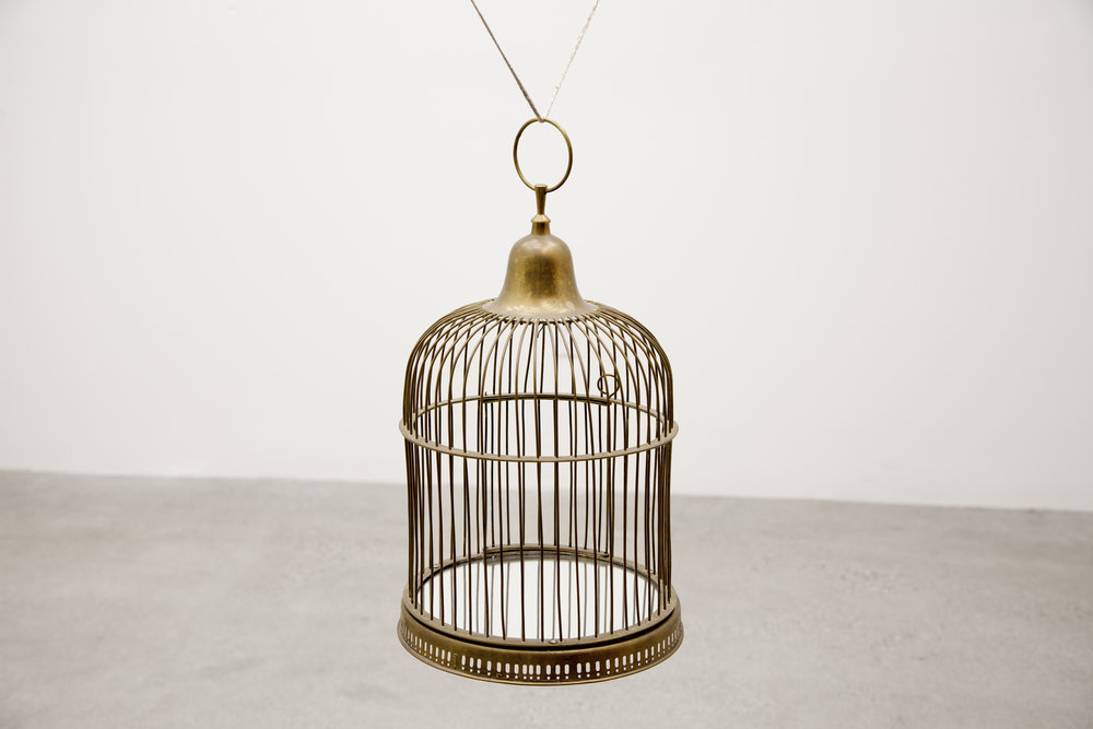 After Narcissus , 2017, brass birdcage, mirrored acrylic, rope, 19 x 11 in