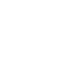 topping-king-avo.png