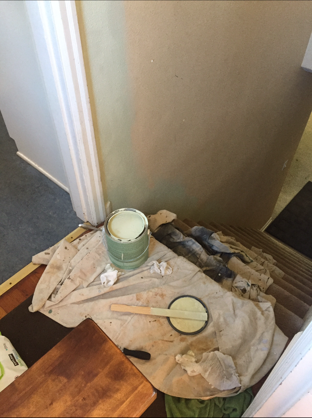 A client wanted to make her home feel more energized and organic, so chose a light sage for the walls.
