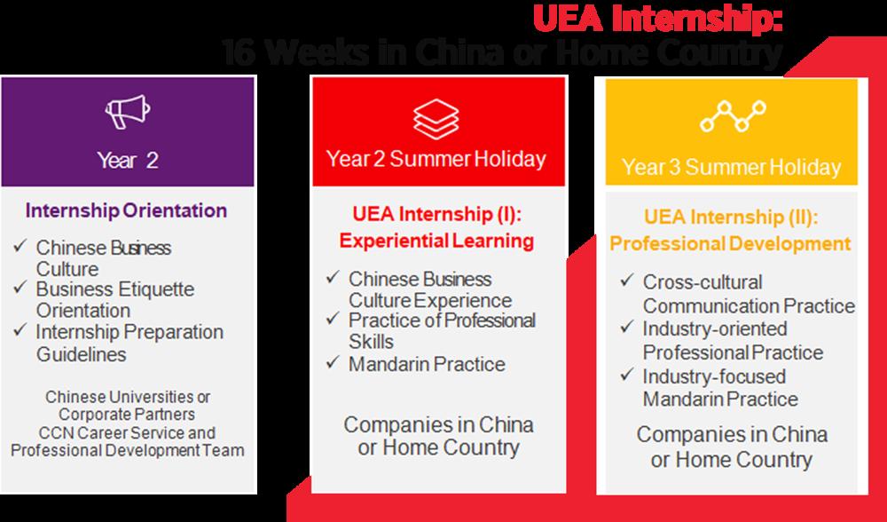 uea-internship1.png
