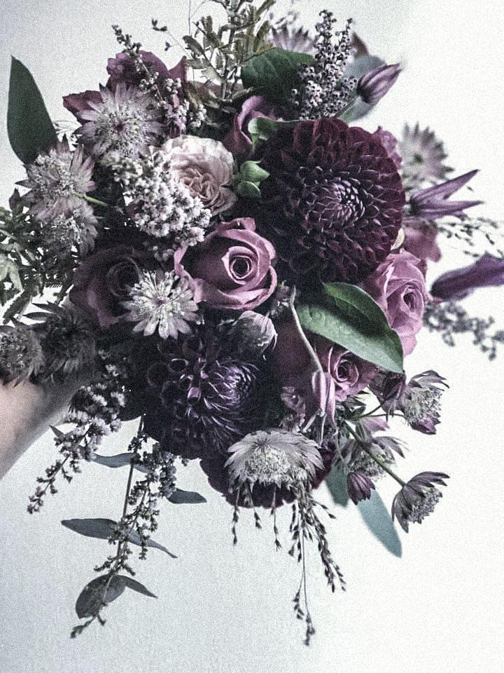 passiflora_1.jpg