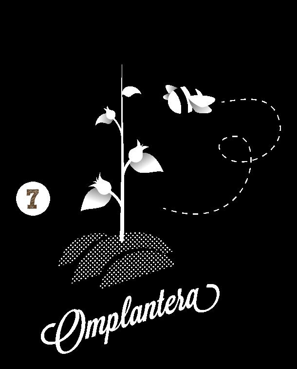 plantera-en-smakis-back7.png