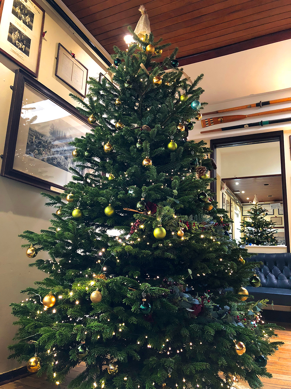 The London Rowing Club Christmas tree, 2018 on display in the Club's Fairbairn Room.  (Photo courtesy of Bob Silver)