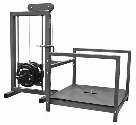 Belt Squat Machine - 1 requiredCode EE